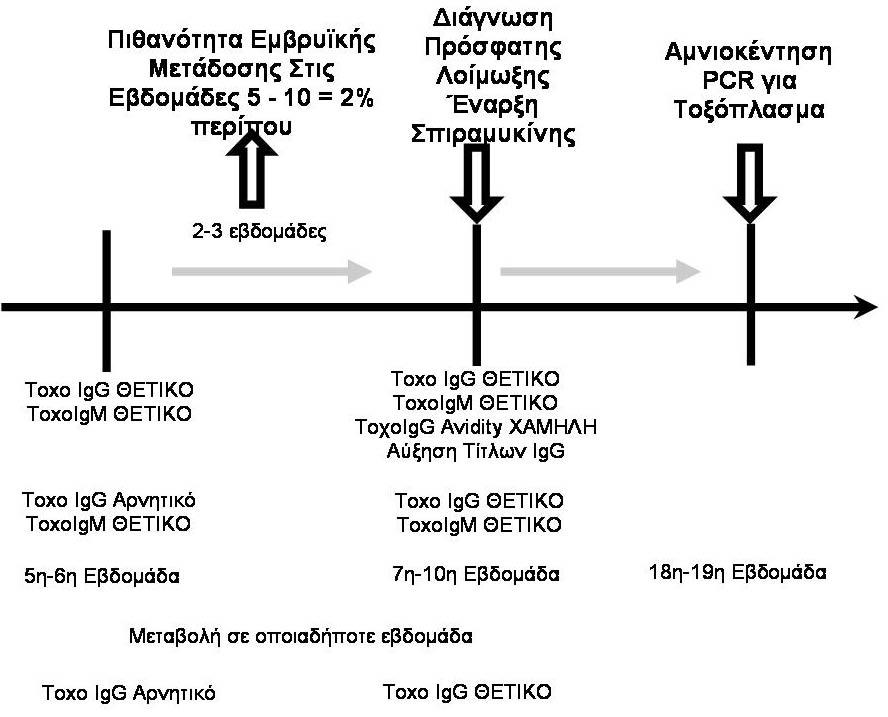 Ενδείξεις για σπυραμυκίνη Rovamycine Τοξοπλασμα